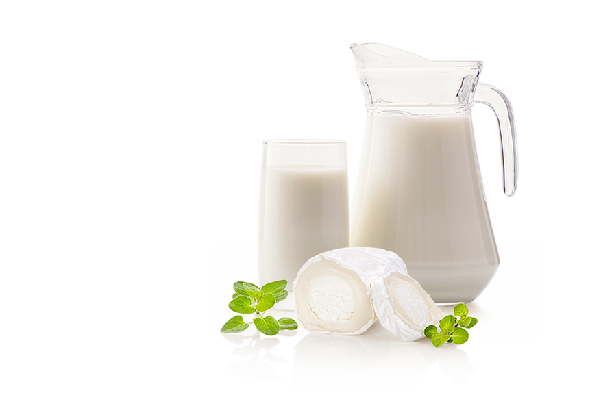 Lapte LaColline